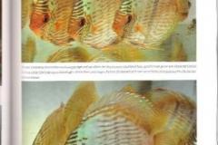 27-01-2012_22-24_5673pg_25_Medium
